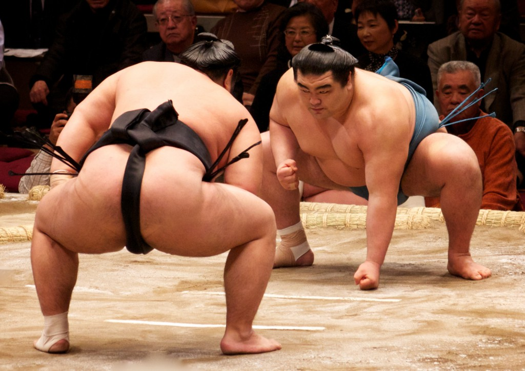 A Battle on the Ring, Sumo!