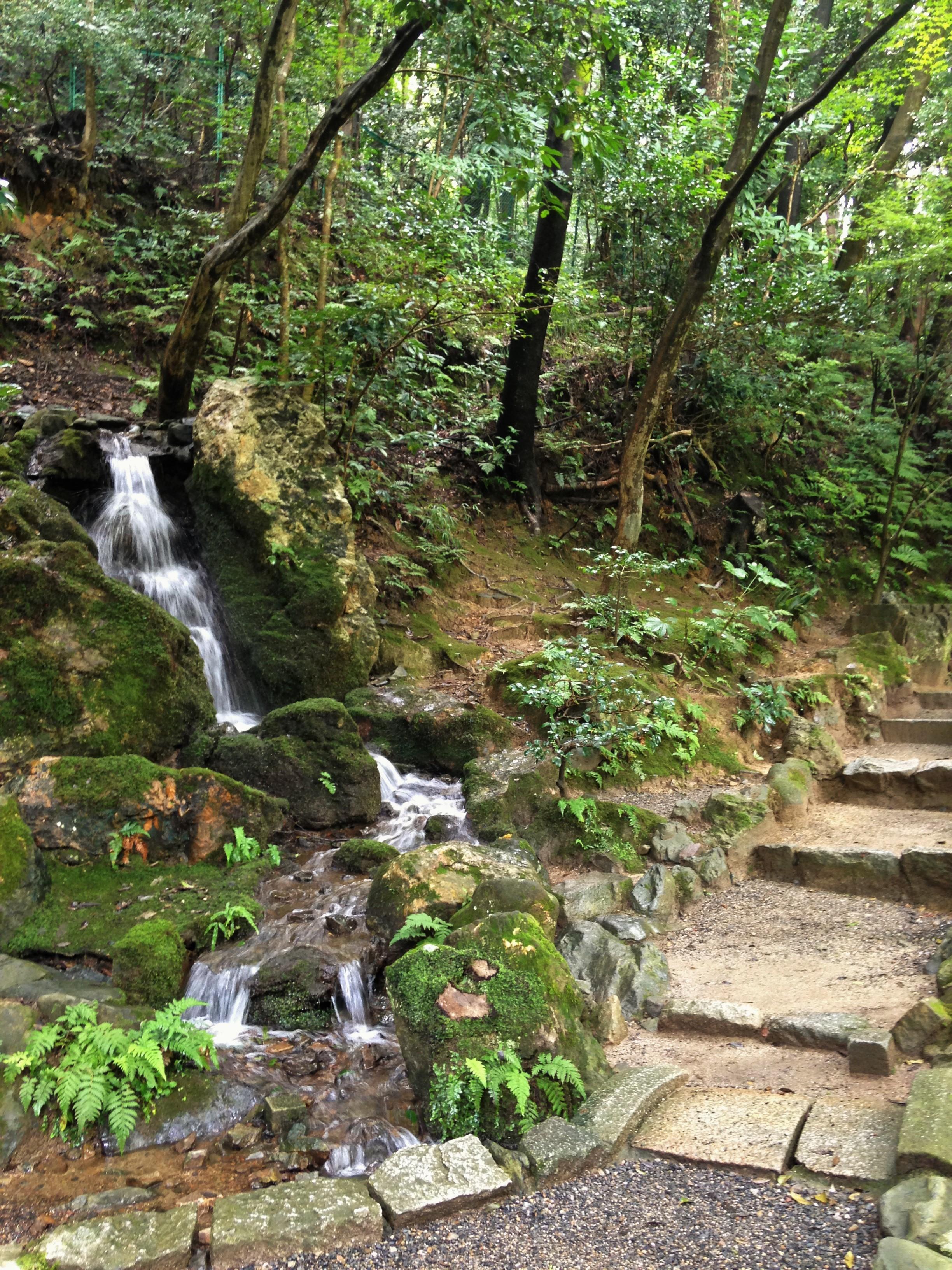 南禅寺㈬滝