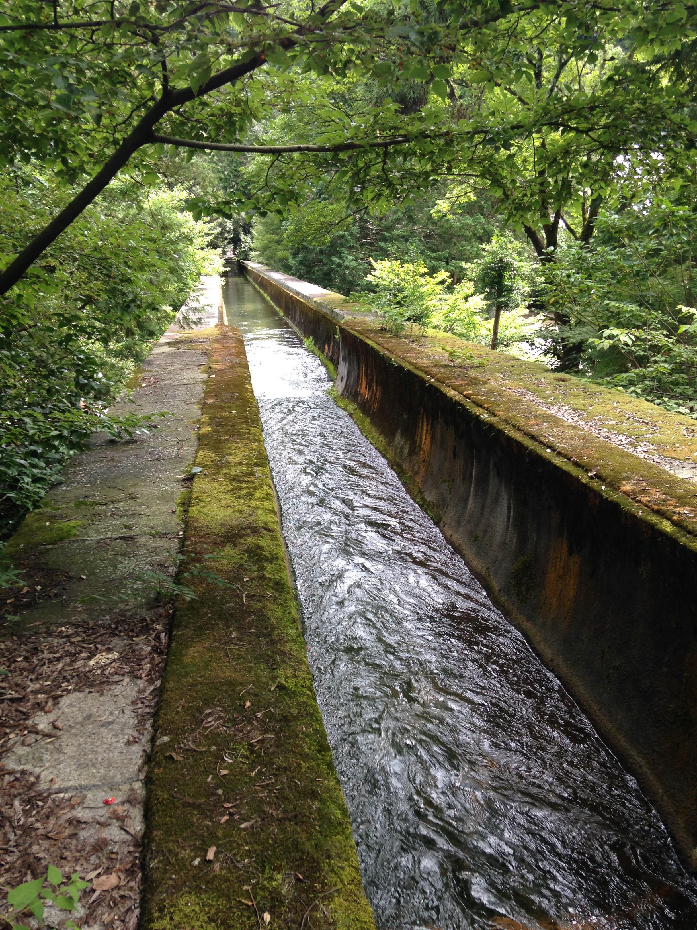南禅寺㈭水路