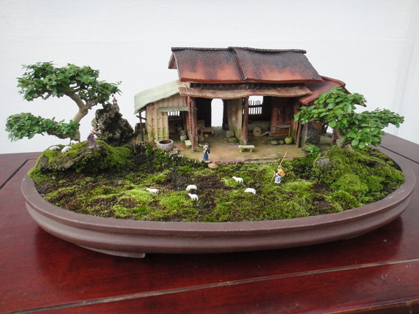 TO CREATE YOUR PERSONAL LITTLE LITTLE GARDEN: BONSAI