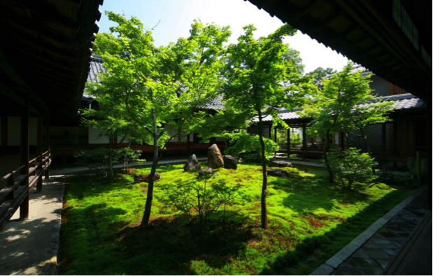 Best 5 Gardens You Must Visit In Kyoto Best Things To Do