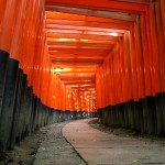 5 Best Shrines in Kyoto